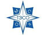 Логотип ТЭСО, ООО